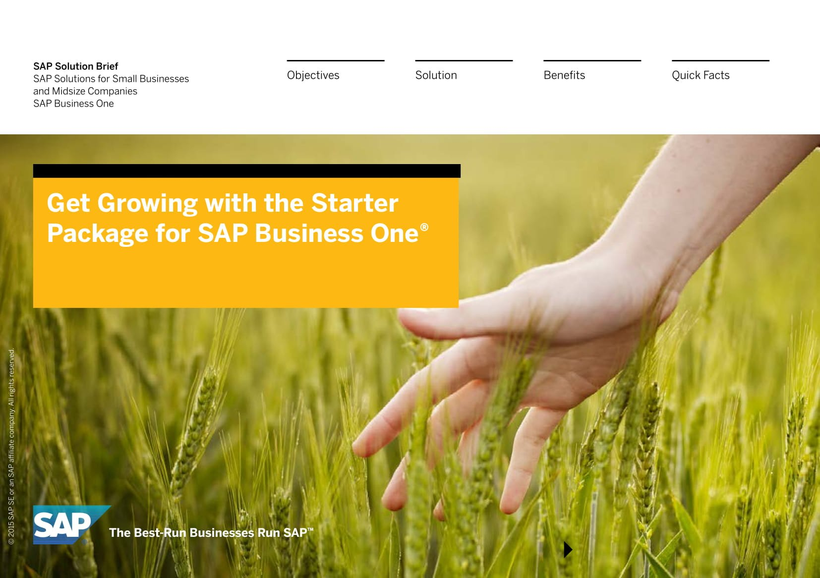 SOLUTION BRIEF Get Growing with the SAP Business One starter package-01
